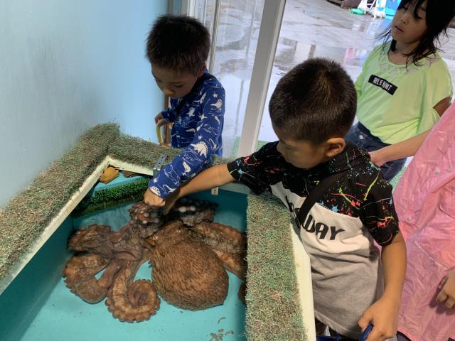【福井・滋賀】水族館に泊まろう(2019夏)