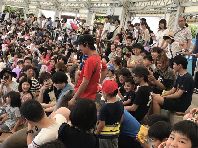 【愛知ブロック】光るどろだんご&南知多ビーチランド(2019夏)