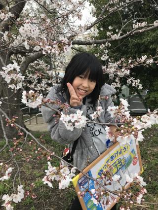 桜 キレイ ♪