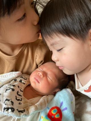新しい家族
