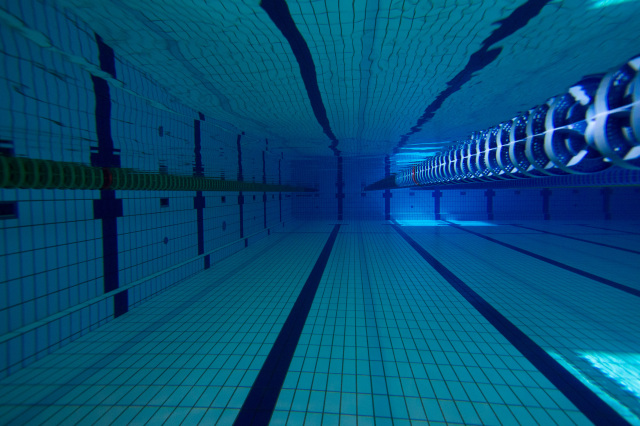 第61回 全国中学水泳競技大会